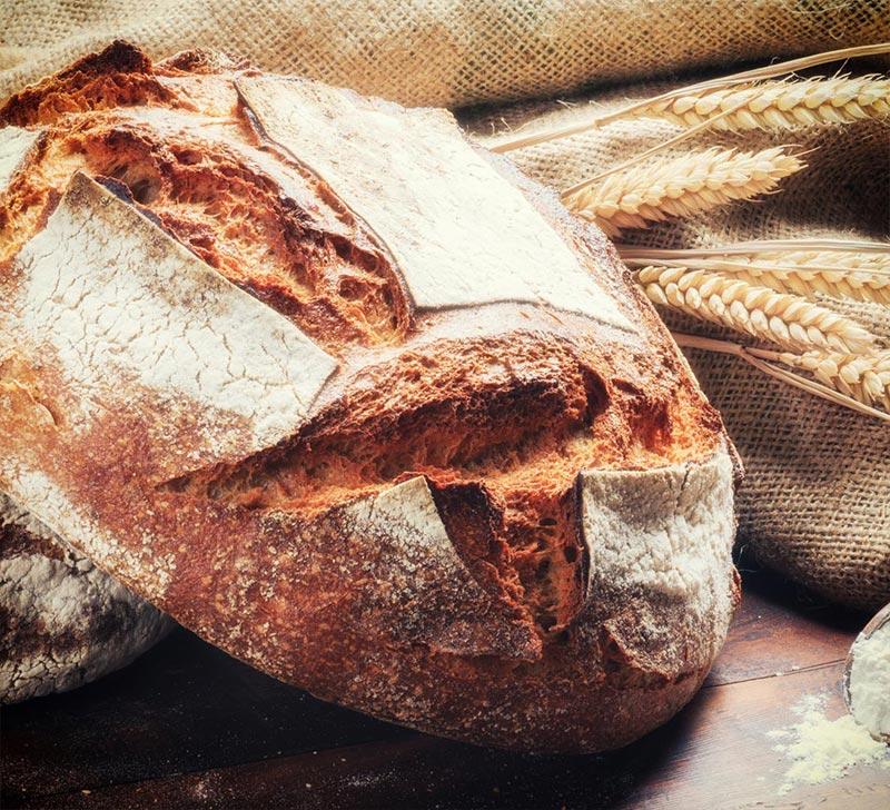 Recette pain de campagne avec la Compact Cook Elite